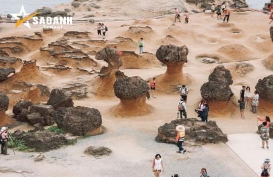 Hà Nội - Đài Bắc - Đài Trung - Cao Hùng