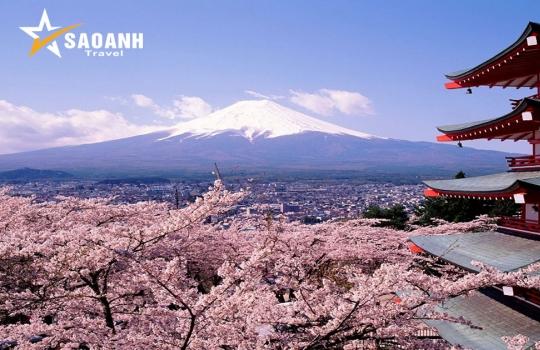 Hà Nội - Tokyo - Núi Phú Sỹ - Kyoto - Osaka
